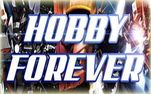 L'actu d'Hobby Forever : petit lifting et nouvelles sections