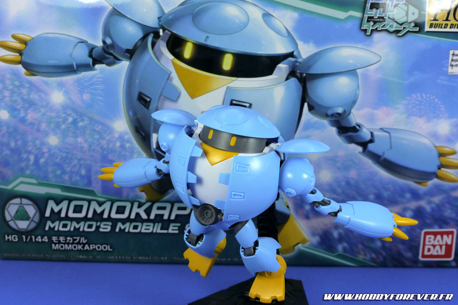 Review - HG Momokapool