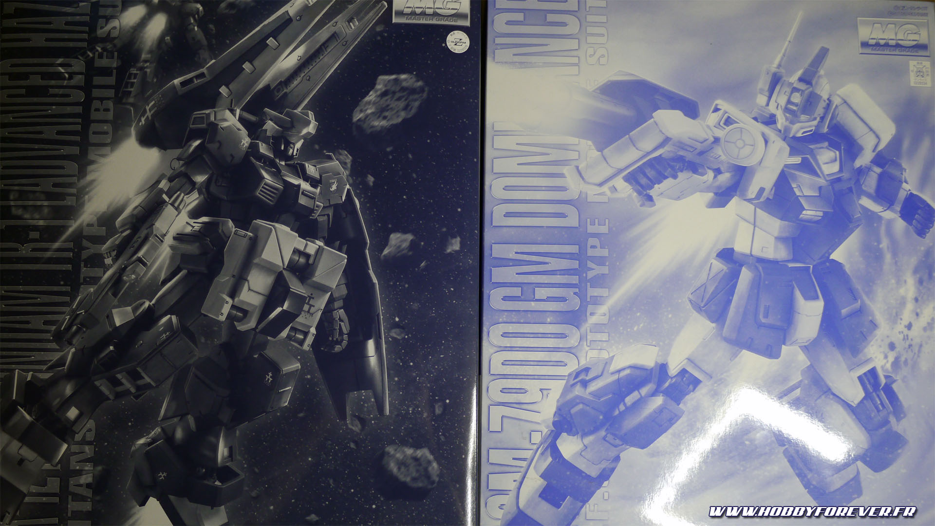 Deux de mes kits P-Bandai : le MG Gundam TR-1 Advanced Hazel et le MG GM Dominance