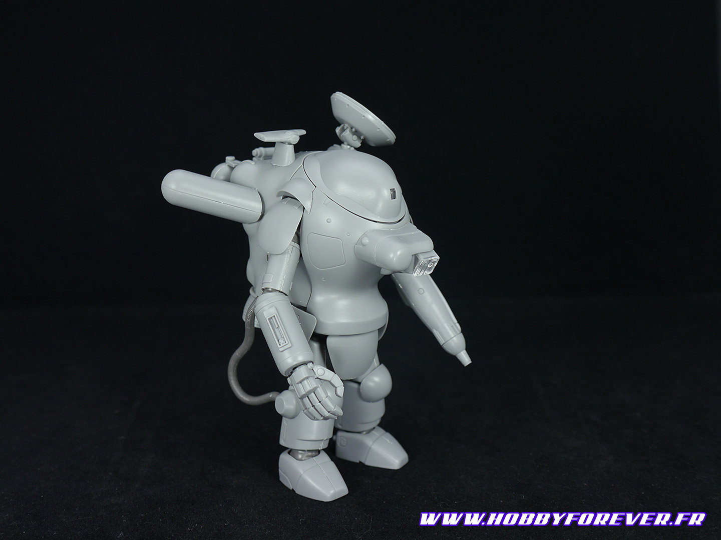 S.A.F.S. Snake-Eye Reconnaissance Type SEA PIG 1/20 - Review