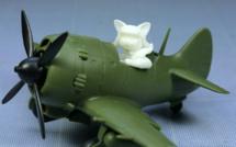 Review - Nakajima Ki-84 Fighter and Pilot - Cute Model par Tiger Model
